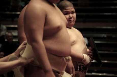 Детское сумо (12 фото)