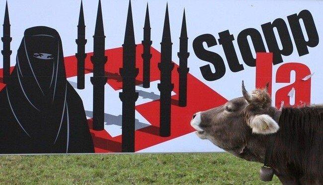 Голосование Швейцарской коровы (3 фото)