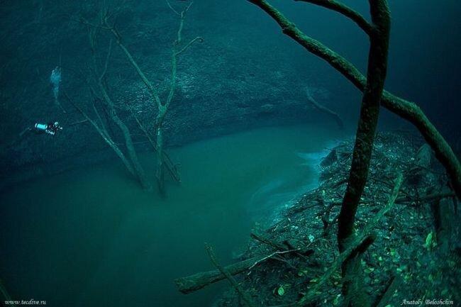 Подводная река (3 фото)