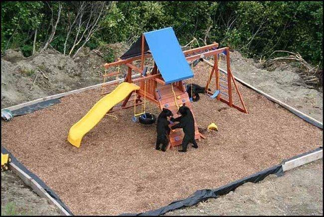 Детская площадка на Аляске  (4 фото)