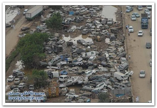 Последствие наводнения (35 фото)
