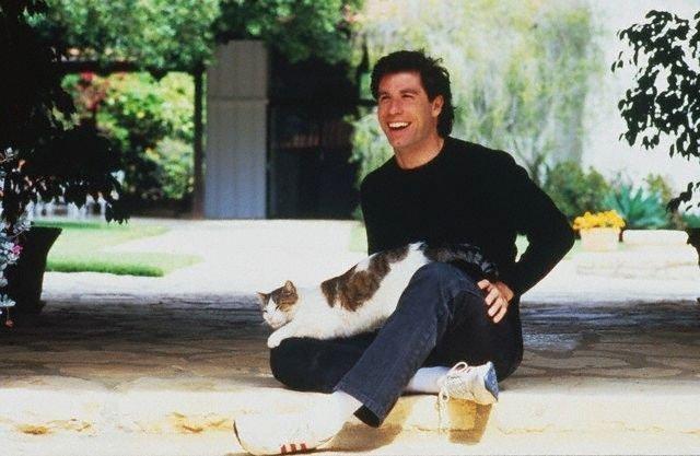 Известные люди с кошками (14 фото)
