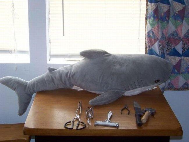 Акулья упаковка для подарков (23 фото)