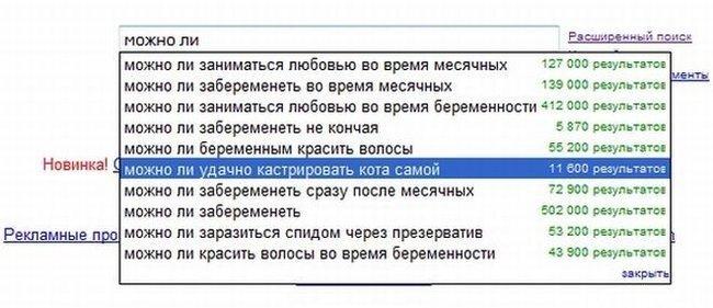 Поиск в Яндекс и Google (14 фото)