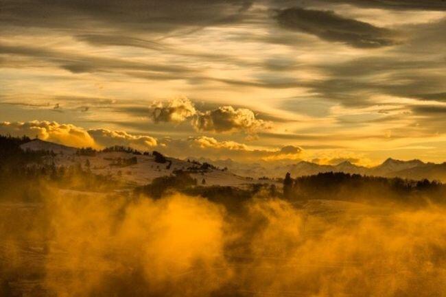 Красивые фотографии Рикарду Гомеса (26 фото)