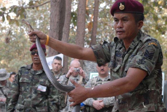 В Таиланде начались учения Cobra Gold 2010 (CG10)   (24 фото)