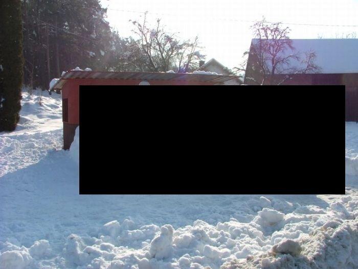 Не детские снеговики (6 фото)