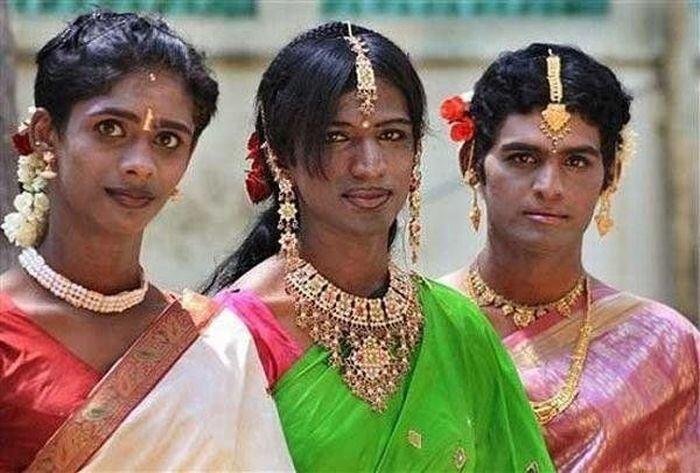 Индийские евнухи (12 фото)