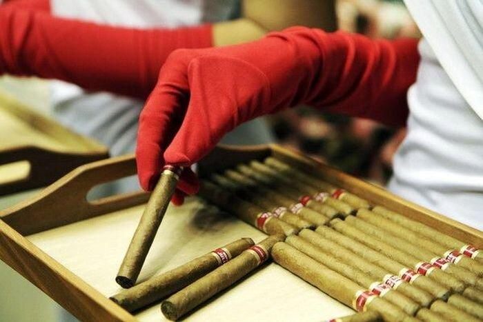 На Кубе открылся Международный фестиваль сигар (10 фото)