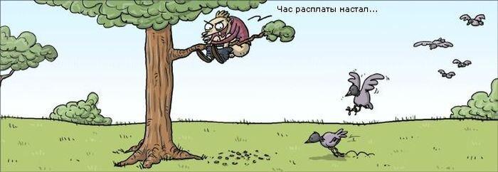Забавные комиксы. Часть 3. (39 фото)