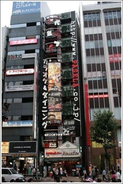 Самые тонкие здания Японии (22 фото)