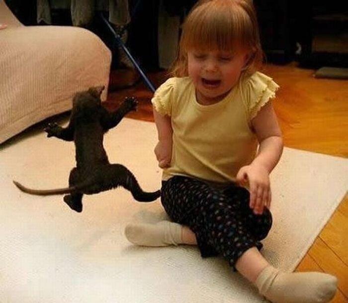 Детишки с кошаками (23 фото)