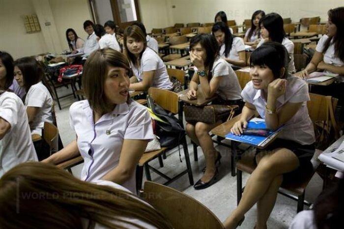 Транссексуалы в таиландском университете (18 фото)