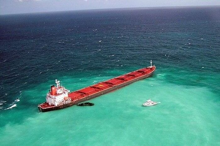 Большому Барьерному рифу грозит экологическая катастрофа (10 фото)