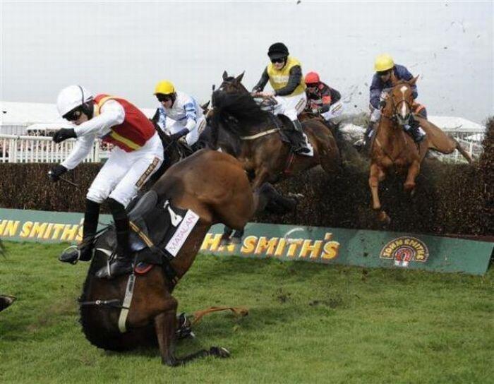 Забеги на лошадях в Ливерпуле (23 фото)