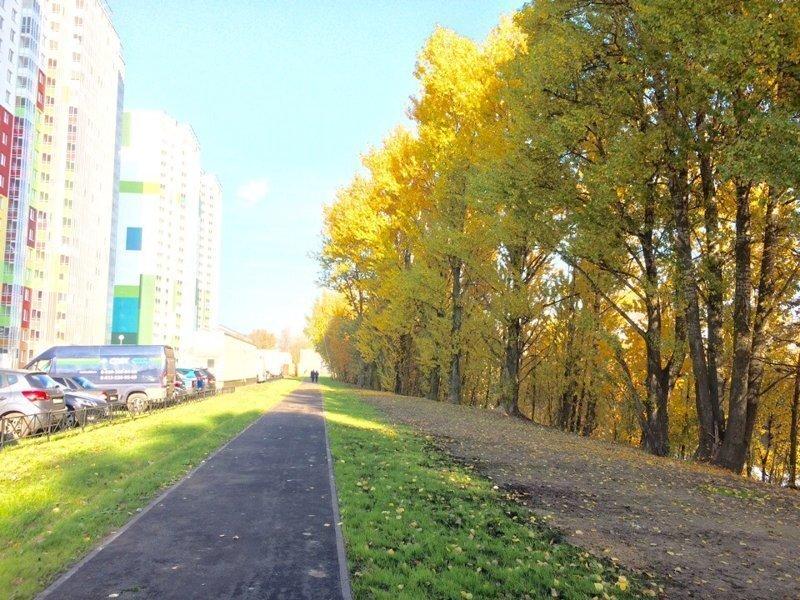 Как организовать парк у своего дома? Простой положительный опыт