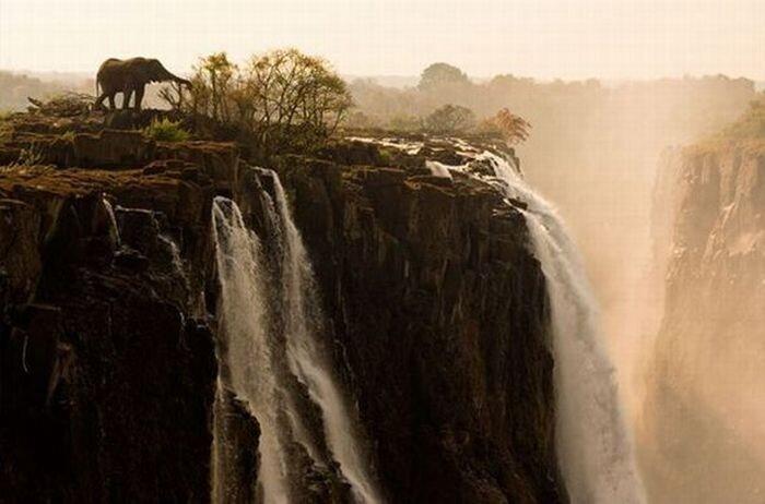Фотографии от National Geographic (36 фото)