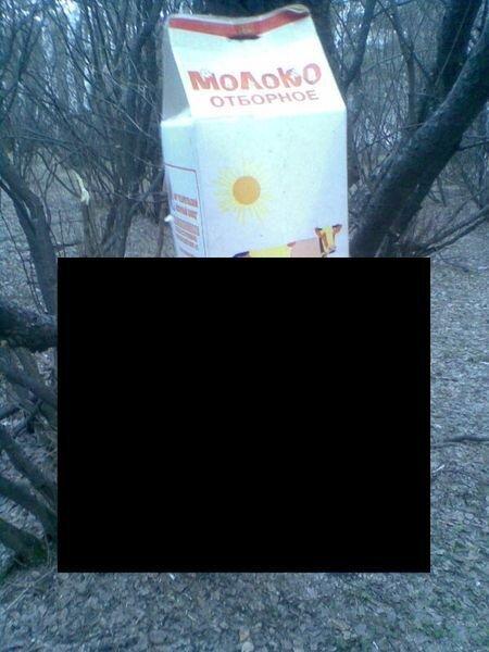 Суровые челябинские кормушки (2 фото)