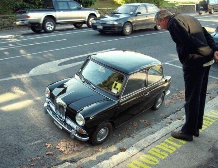 Самые прикольные дорожные ситуации (50 фото)