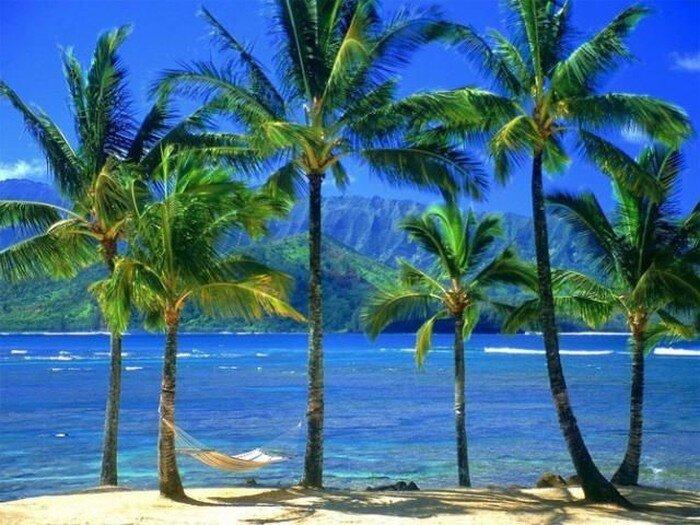 Гавайские пейзажи (23 фото)
