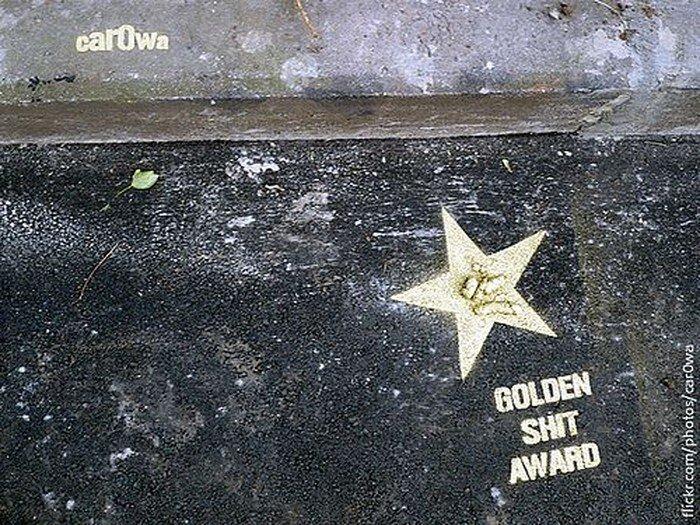 """Питерская награда """"Golden Shit"""" (8 фото)"""