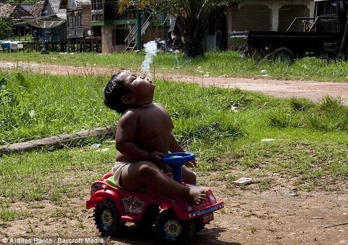 Арди Ризал, двухлетний курильщик из Индонезии (4 фото + видео + текст)