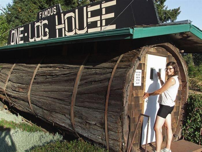Дом внутри дерева (3 фото)