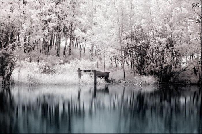 Инфракрасные фото (32 фото)