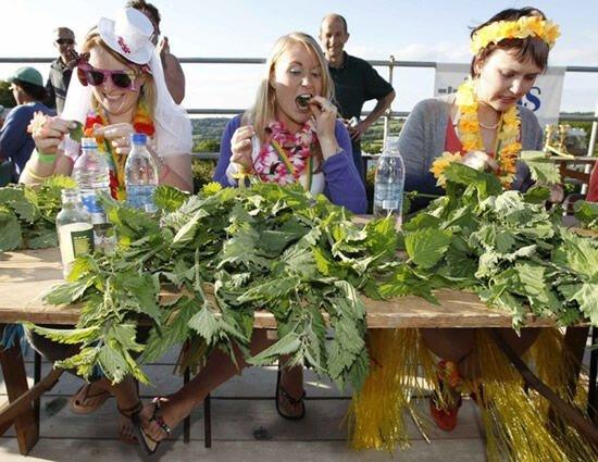 Соревнования по поеданию крапивы (9 фото)