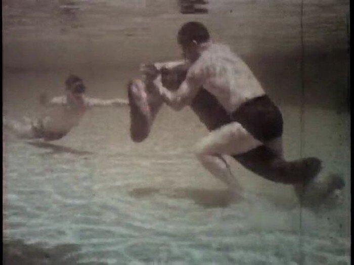 Борьба с 10-метровой анакондой  (19 фото)