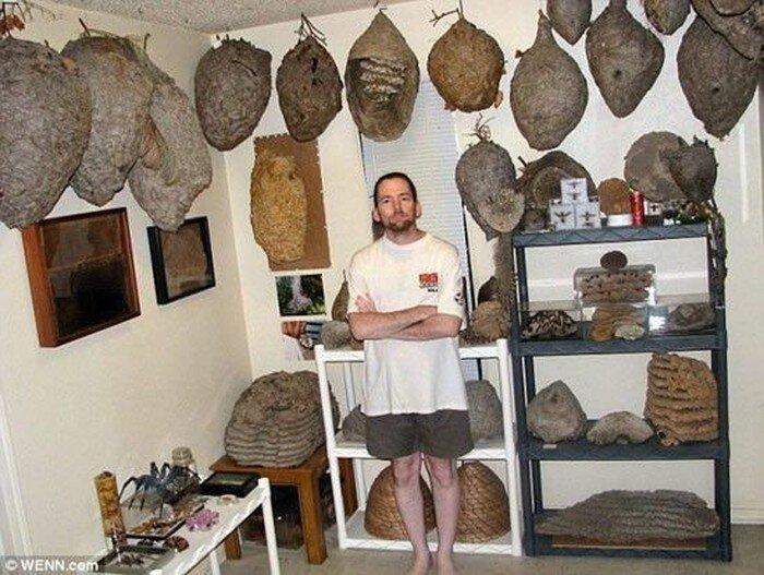 Коллекционер осиных гнезд (7 фото)