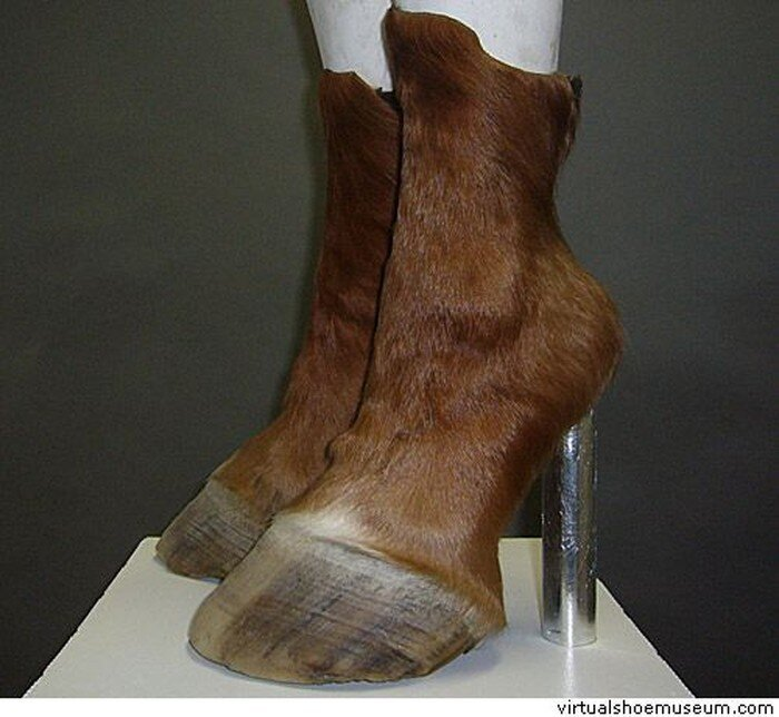 Обувь из животных (4 фото)