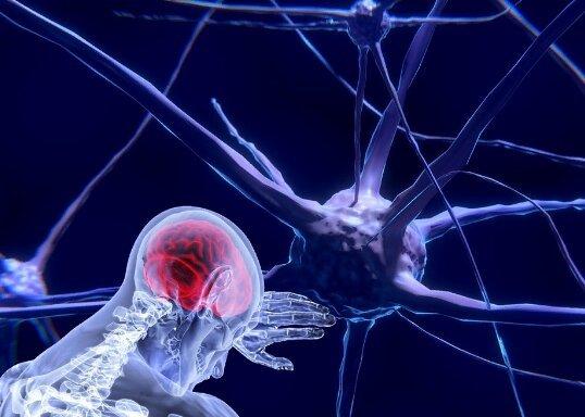 Ученые рассказали, сможет ли «умная таблетка» сделать мозг молодым