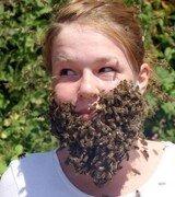 Борода из пчел (3 фото)