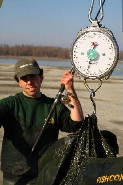 В Италии поймали гигантского сома (9 фото)