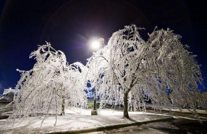 Шикарные зимние фотографии (49 фото)