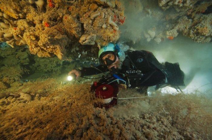 Потрясающие пещеры Багамских островов (23 фото)