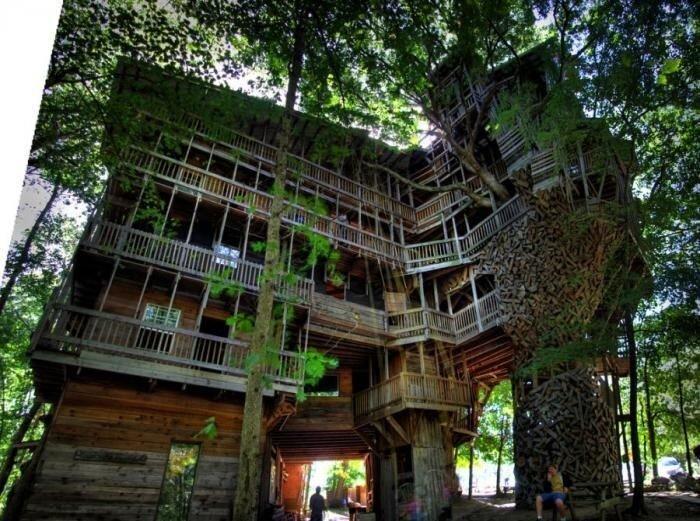 Самый большой домик на дереве (7 фото)