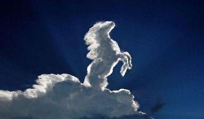 Облака лошадками (16 фото)