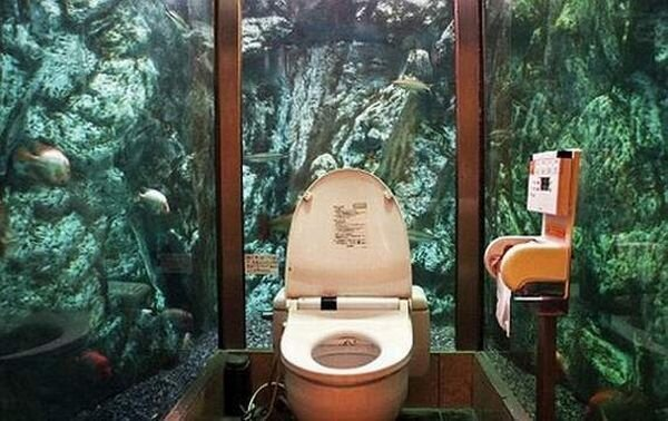 Не обычные туалеты (11 фото)