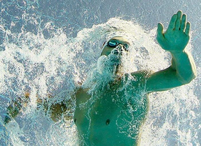 Фоторографии плавцов (23 фото)