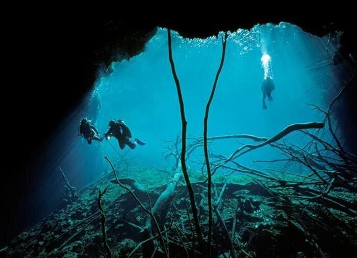 Подводные пещеры (13 фото)
