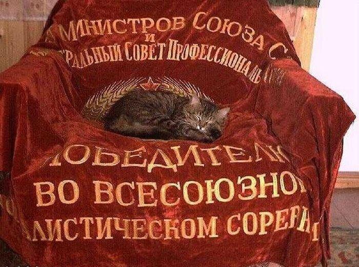 Предметы советского быта (39 фото + текст)