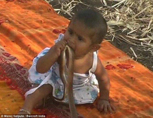 Индийские малыши вместо игрушек играют с мёртвыми змеями (3 фото)