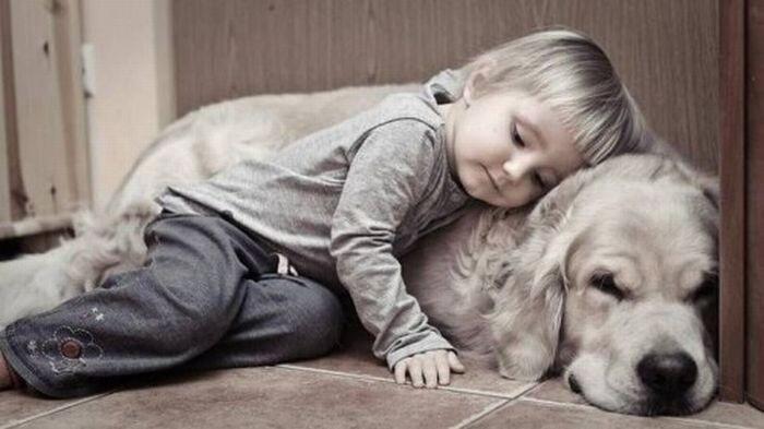 Дети и домашние животные (20 фото)