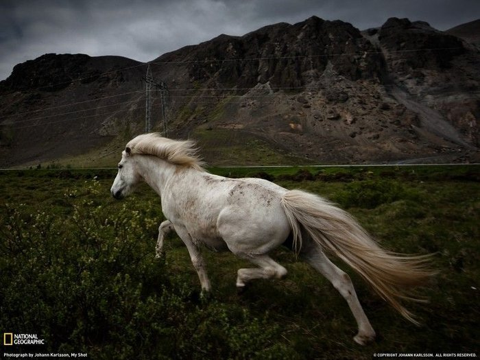 Фото National Geographic за февраль 2011 (28 фото + текст)