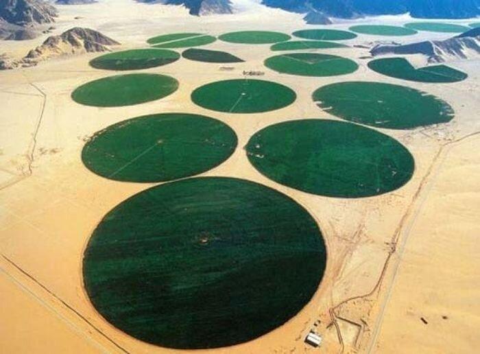 Грандиозный водный проект Каддафи (4 фото)