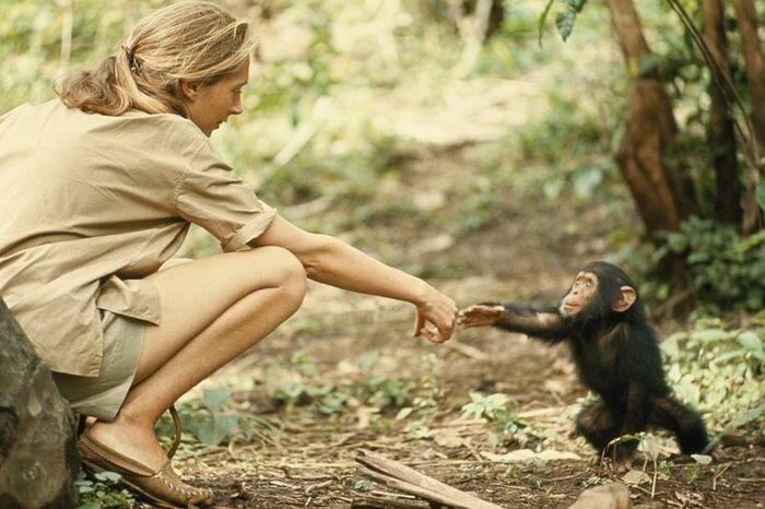 Журналу National Geographic 125 лет (13 фото)