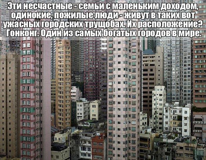 Жизнь в трущобах Гонконга (9 фото)