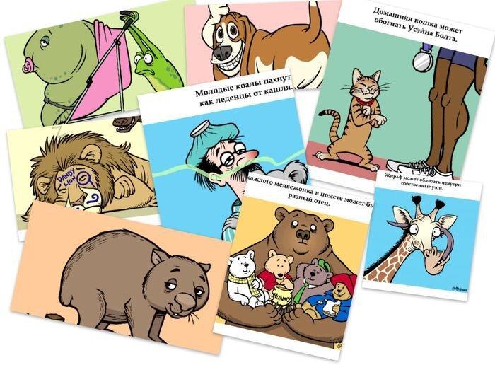 Занимательная зоология в гифках (17 гифок)